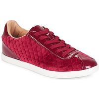 Παπούτσια Γυναίκα Χαμηλά Sneakers André VELVET Red