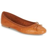 Παπούτσια Γυναίκα Μπαλαρίνες André PIETRA Brown