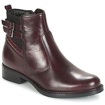Παπούτσια Γυναίκα Μπότες André CARLIN Bordeaux