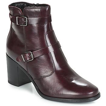 Παπούτσια Γυναίκα Μπότες André TORI Bordeaux