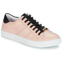 Παπούτσια Γυναίκα Χαμηλά Sneakers André BERKELEY Beige