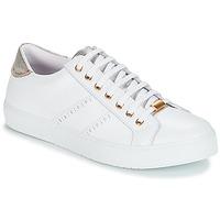 Παπούτσια Γυναίκα Χαμηλά Sneakers André BERKELEY Άσπρο