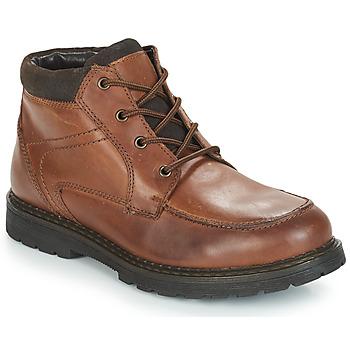 Παπούτσια Άνδρας Μπότες André AREZZO Brown