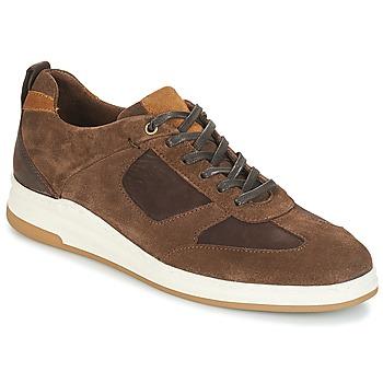 Παπούτσια Άνδρας Χαμηλά Sneakers André CINZA Brown