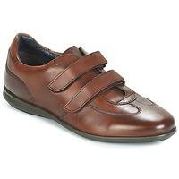 Παπούτσια Άνδρας Χαμηλά Sneakers André FACILE Brown