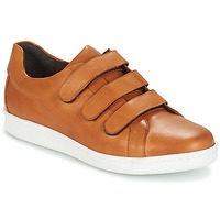 Παπούτσια Άνδρας Χαμηλά Sneakers André AVENUE Brown