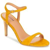 Παπούτσια Γυναίκα Σανδάλια / Πέδιλα André SAXO Yellow