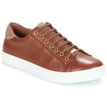 Παπούτσια Γυναίκα Χαμηλά Sneakers André BERKELEY Cognac