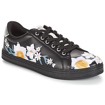 Παπούτσια Γυναίκα Χαμηλά Sneakers André COROLLE Black