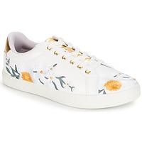 Παπούτσια Γυναίκα Χαμηλά Sneakers André COROLLE Άσπρο