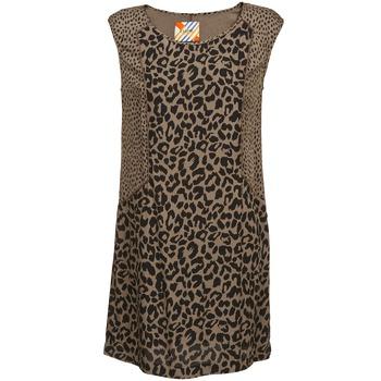 Υφασμάτινα Γυναίκα Κοντά Φορέματα Chipie RITA Beige