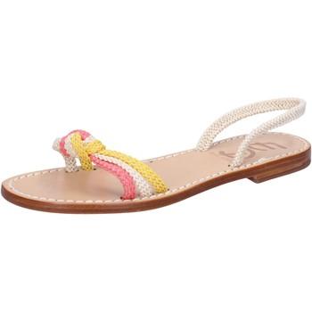 Παπούτσια Γυναίκα Σανδάλια / Πέδιλα Eddy Daniele AV411 λευκό