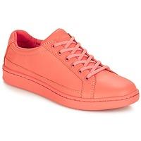 Παπούτσια Γυναίκα Χαμηλά Sneakers Timberland San Francisco Flavor Oxford Crabapple