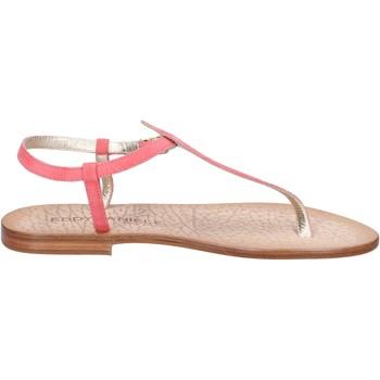 Παπούτσια Γυναίκα Σανδάλια / Πέδιλα Eddy Daniele AX914 Ροζ
