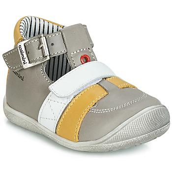 Παπούτσια Αγόρι Ψηλά Sneakers Catimini TIMOR Grey / Moutarde