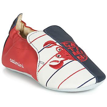 Παπούτσια Αγόρι Παντόφλες Catimini CALURA Marine / Red