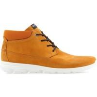 Παπούτσια Άνδρας Μπότες Ecco Mens  Calgary 834334-59685 brown